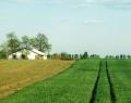 Az orosházi tanyavilág