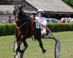 Bogárzói Lóversenypálya