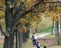 Kerékpározás a Gyopárosi tó körül