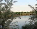 Béke / Homokbánya tó horgászlesről