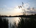 Béke / Homokbánya tó naplementében
