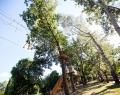 Alföld Gyöngy Kalandpark