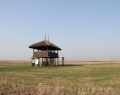 Kardoskút-Fehértói kilátó