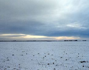 The lowland Puszta in Winter